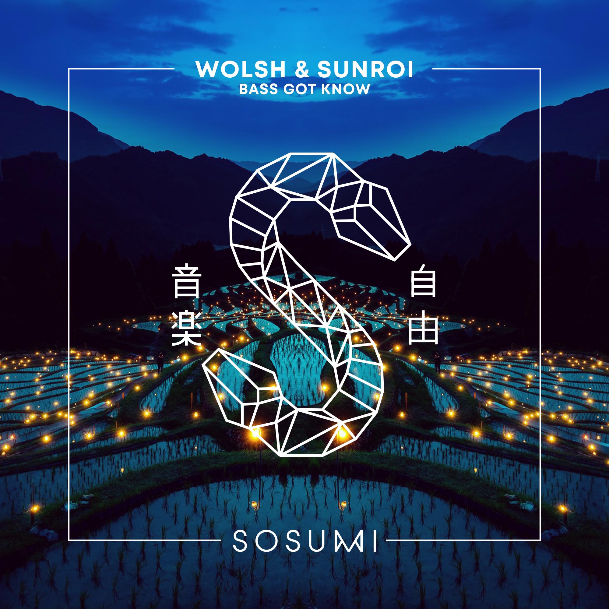 Bass Got Know - Wolsh y Sunroi